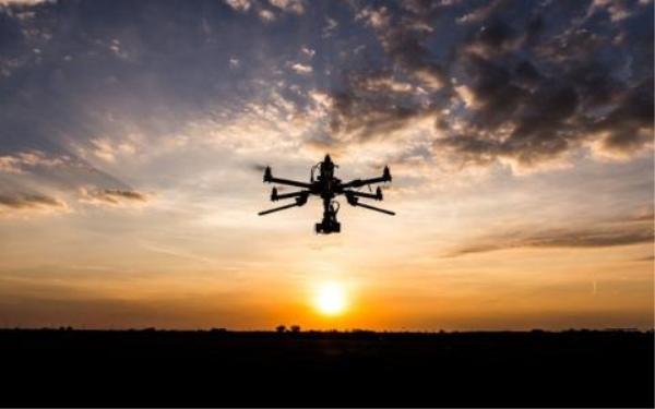 在网络上可以购买无人机猎人吗?